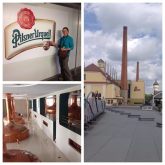 Staggering production figures, huge copper kettles, 5 week brew, triple heat, massive influence on the world beer market. Local restaurants serve unpasteurised tank beer.